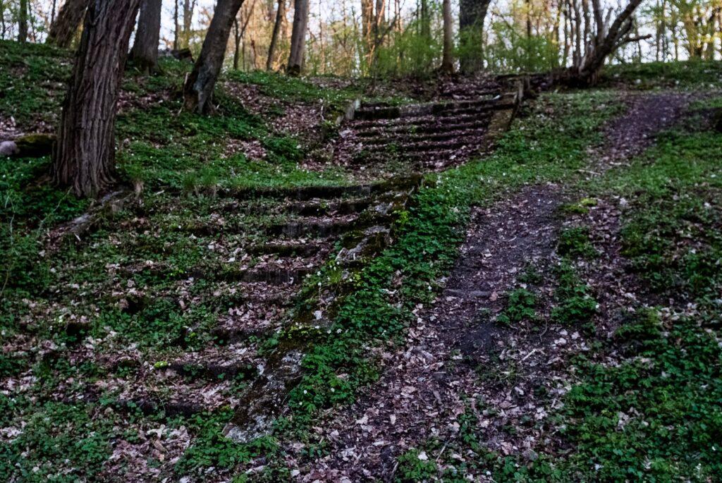 Stare, kamienne schody w dawnym parku przysypane opadającymi liścmi