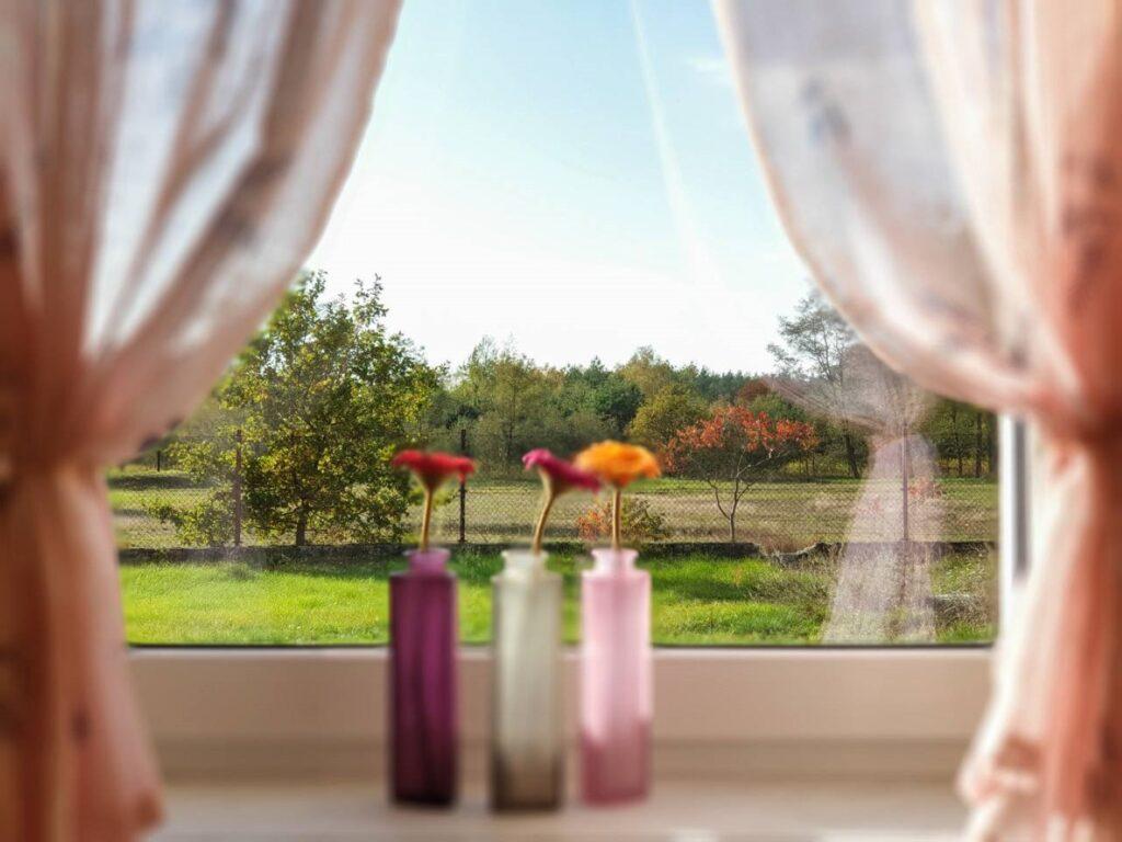 Trzy kolorowe wazony na parapecie okna, w każdym po jednej gerberze